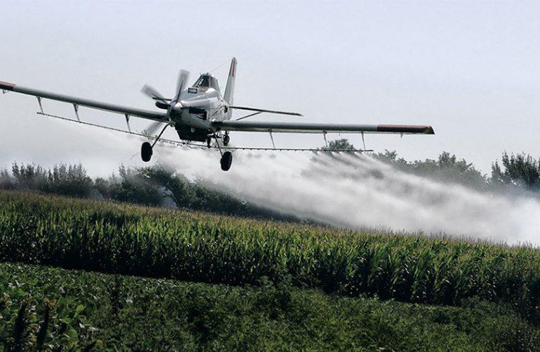Primera fase de aspersión se erradicarían 26 mil hectáreas